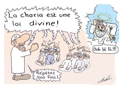 11 chari