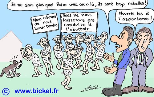 3Amout