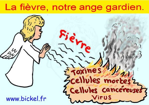 La fièvre, un processus vital